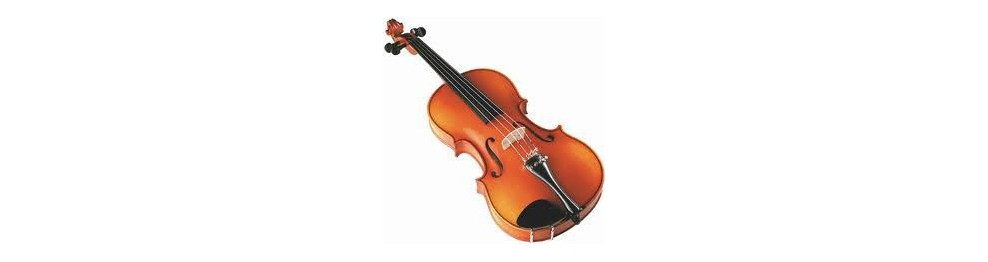 Cuerdas violín