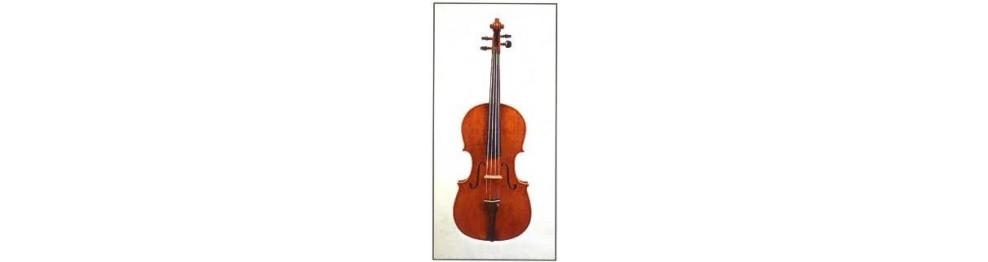 Cuerdas viola